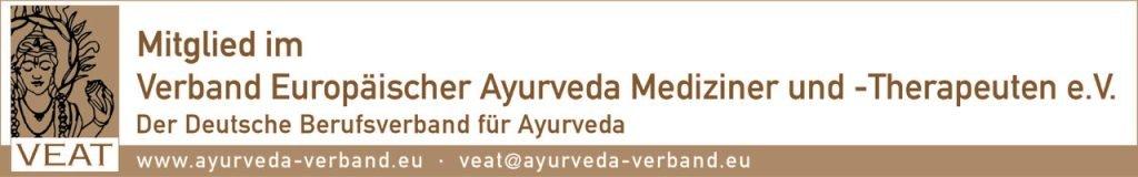 VEAT Logo